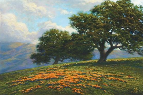 Santa Ynez Valley Poppies by Dirk Foslien